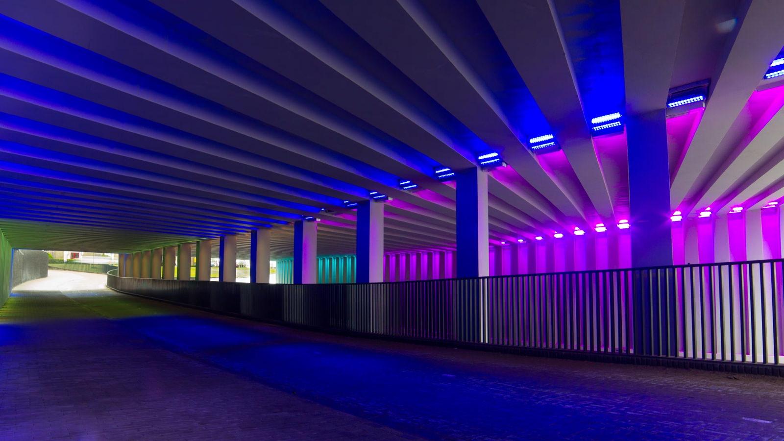 Pitch video | Tunnel Visie - De Onderdoorgangen in de Gemeente Zutphen in een videopitch in beeld gebracht